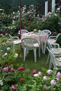 2017・バラの季節のガーデンパーティー - 元木はるみのバラとハーブのある暮らし・Salon de Roses