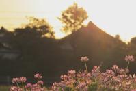 夕暮れ色に染まる - 赤煉瓦洋館の雅茶子