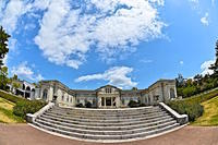 神宮徴古館のシャクナゲ - 玉家の生活報告