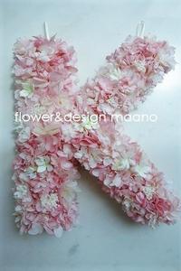 桜の季節の誕生に。。 - maano diary マーノ日々のこと