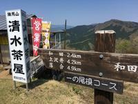 陣馬山は春、春、春。 - なのだの登山日誌