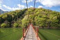 新緑の季節へ - 四季燦燦 癒し系~^^かも風景写真