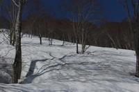 20170430 【登山】鍋倉山・黒倉山 - 杉本敏宏のつれづれなるままに