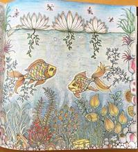 Thank you!! 彩色例の投稿 『ひみつの花園』by 理英さん - オトナのぬりえ『ひみつの花園』オフィシャル・ブログ