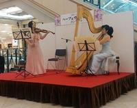 ハープ&ヴァイオリンミニコンサート - ハーピストの日常
