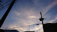 空や風や木と、人間の魂と - 風