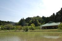 初夏の昆虫たち - 千葉県いすみ環境と文化のさとセンター