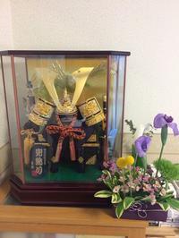 5月5日は端午の節句 - 北赤羽花屋ソレイユの日々の花