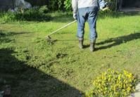 夫は草刈りやブドウ棚作り~私は家の中の移動 - 島暮らしのケセラセラ