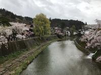 花の雨 - 花咲く俳句日誌