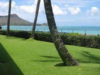 2016年6月27日オーキッズでおひとり様ランチ - ハワイでも のんびりいこうやぁ