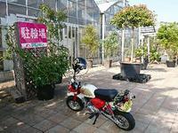 平田ナーセリー - NATURALLY