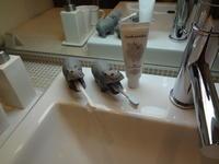 歯ブラシとって! - ordinary days