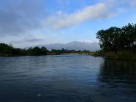 犀川、ボーズ・・・ - ブラウンなトラウト