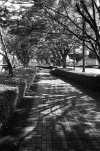 5月 - Photo-En ~ゆるりフォトライフ