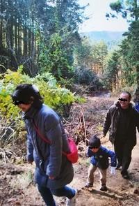 大黒柱伐採見学ツアー - きの家を建てる