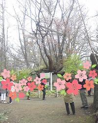 石割桜 - リラクゼーション マッサージ まんてん