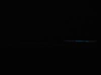 夜光虫を見に行ってきました - 葉っぱ=64 PART2