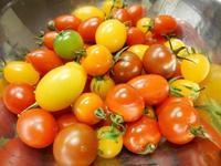 トマトがいっぱい - 坂の上のキッチンから