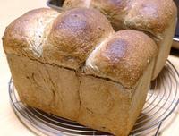 ザ・山食とよもぎのパン - ~あこパン日記~さあパンを焼きましょう
