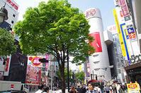 5月12日(金)今日の渋谷109前交差点 - でじたる渋谷NEWS