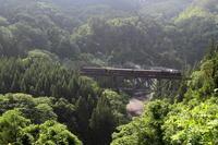 新緑の鉄橋- 只見線 - - ねこの撮った汽車