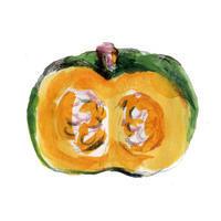 #かぼちゃ 断面とまあるいの。大戸屋食育キャンペーン - まゆみん MAYUMIN Illustration Arts