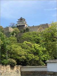 丸亀城と丸亀うどん - 結婚して西へ行くまで~西へ来た