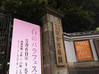 旧古河庭園 - ちくちく薔薇たいむ(*^^*)