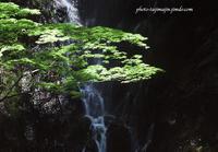 近隣の山と渓谷-3 - Photo Tajima~フィルム&デジタル