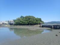 小満 - 名勝和歌の浦 玉津島保存会