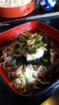 わさび菜おろしそば - 牡蠣を煮ていた午後