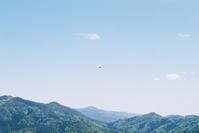 紙飛行機 - nenaland-f