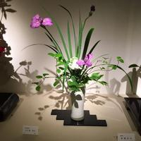 日本いけばな芸術展へ行ってきました - 花を長く楽しむオランダの技法が習得できるフラワーアレンジメント教室 【オンライン/対面】   Champs Fleuris Izmi (シャン フルーリー イズミ)