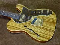 Freedom Custom Guitar Research Green Pepper / 2015年製 - Dolphin Dreams