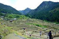 熊野の旅夏日田植え・噴水 - LUZの熊野古道案内