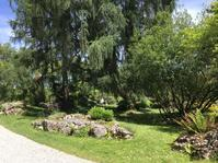 植物園再訪 - 飲食日和 memo