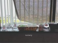 nursery 3 - ちょこってぃ