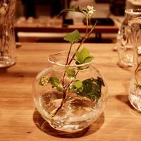 本日最終日17時まで。2017.5.17 → 5.23 takatomi daisuke glass show @玉川タカシマヤ 本館 5階 器百選 - glass cafe gla_glaのグダグダな日々。