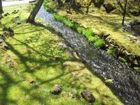 小川 - 浅間高原・北軽井沢 ペンション・ローエングリンの高原日記