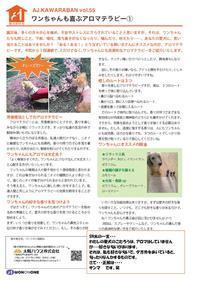 愛犬家住宅太陽ハウス柏 - 新松戸 建築 「創ってます!」太陽ハウス