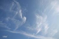今日の空に * - 虹の架け橋  ~天使*精霊たちとともに~