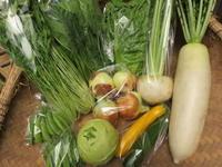 今週の野菜セット5月4週目 - まるみど農園のあれこれ日記