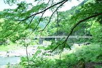 御岳渓谷で森林浴♪ - 今日もカメラを手に・・・♪