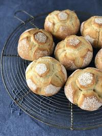 ミクララキッチンの準備 - ~ハード系パン&世界の料理教室・ガストロノマードのTastyTravel~