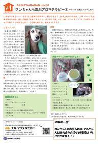 愛犬家住宅太陽ハウス松戸 - 新松戸 建築 「創ってます!」太陽ハウス