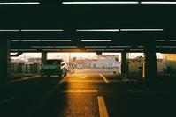 夕日が射す - おれんじねこどろっぷの写真録