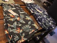 ALOHA SHORTS - WEEDS STAFF blog