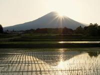 ちょっと時期が遅かったダイアモンド富士 - のんびりまったり写真館