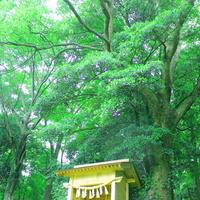 瀬織津姫を祀る神社がすぐ近くに! - Miemie  Art. ***ココロの景色***